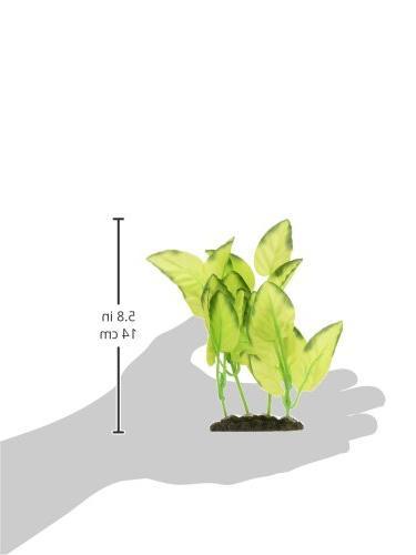 Marina Plant,