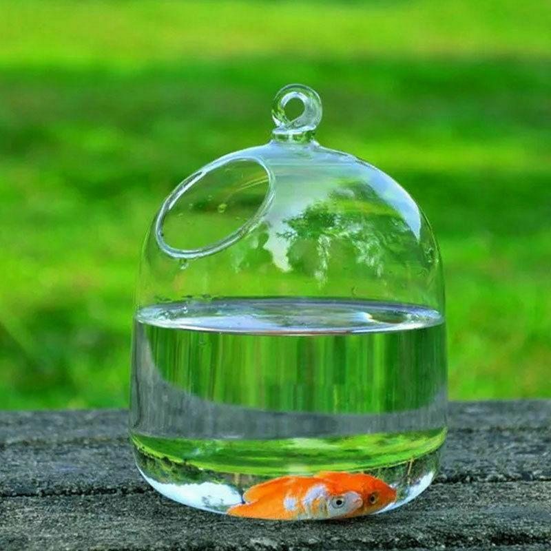 Hanging Transparent Fishbowl Aquarium