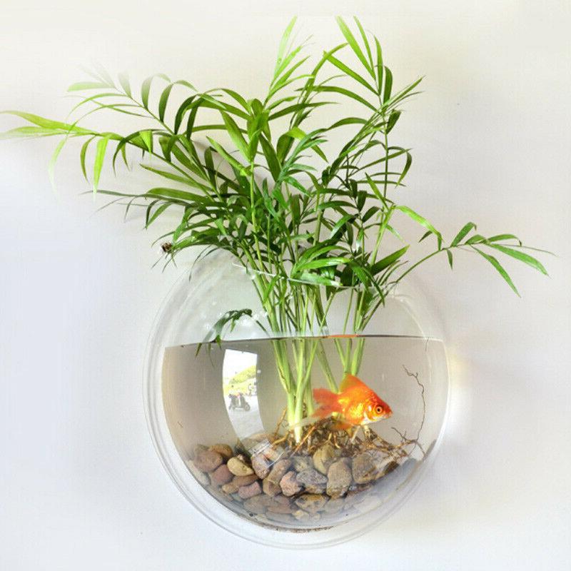 Hanging Mounted Bowl Bubble Aquarium Terrarium Goldfish