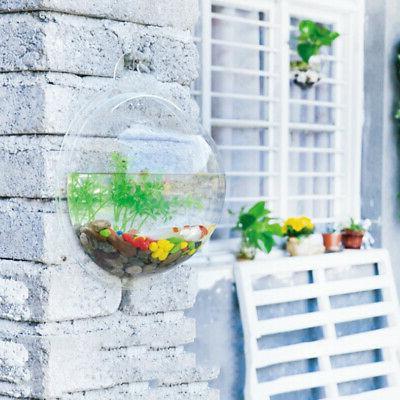 Hanging Wall Fish Tank Mounted  Bowl Bubble Aquarium Terrari