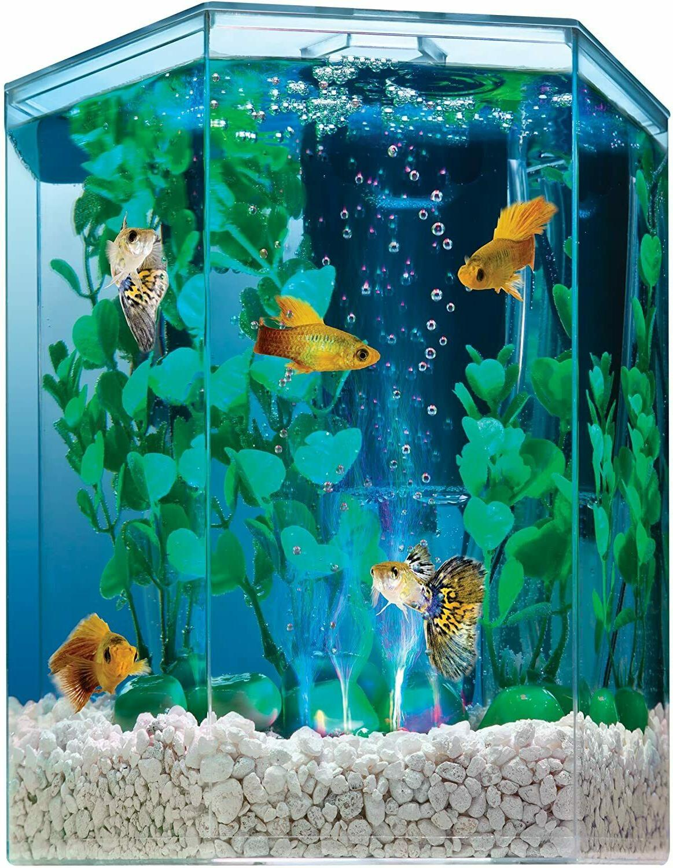 Hexagon Aquarium Tetra LED Bubbler Gold Fish Set