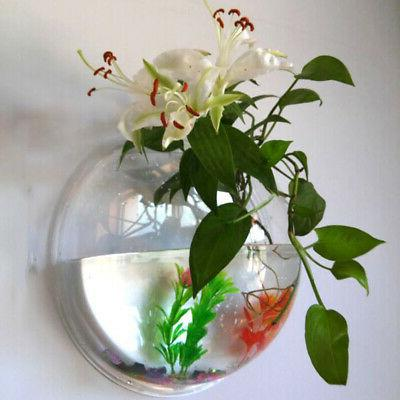 Home Decoration Mount Fish Tanks Acrylic Hanging