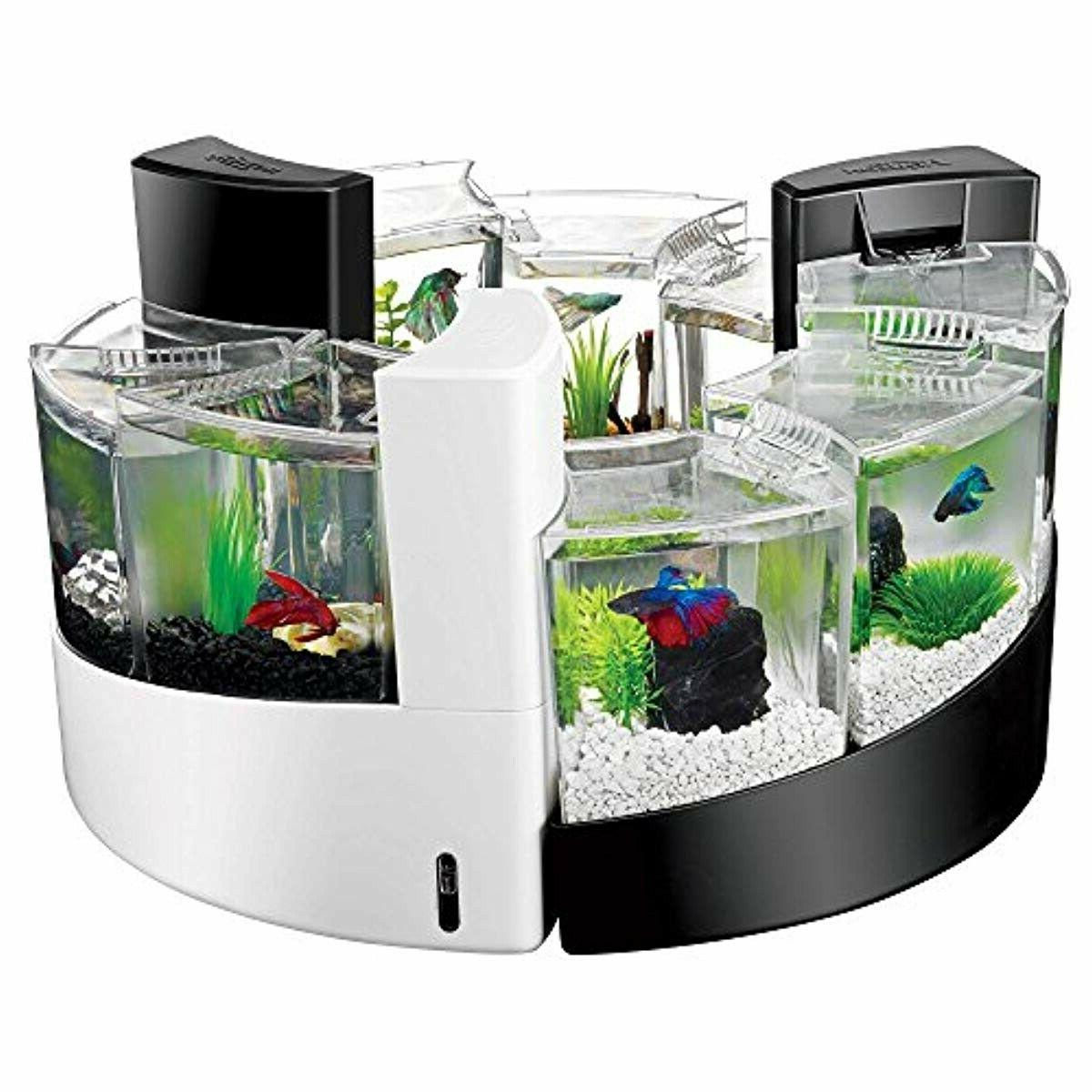BLACK FISH TANK NEW FREE SHIPPING