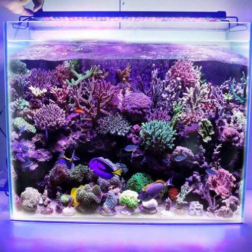 "24"" 48"" Spectrum LED Freshwater Fish Tank Marine"