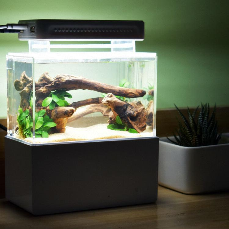 Cunzo Fish Shrimp Tank with Filtration &