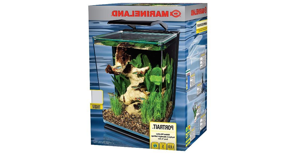 Modern 5 Portrait Fish Kit with LED Lighting NEW
