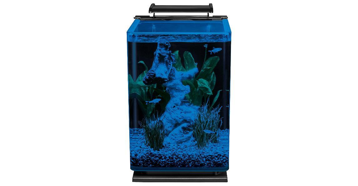 Modern Portrait Fish Tank Starter Kit NEW