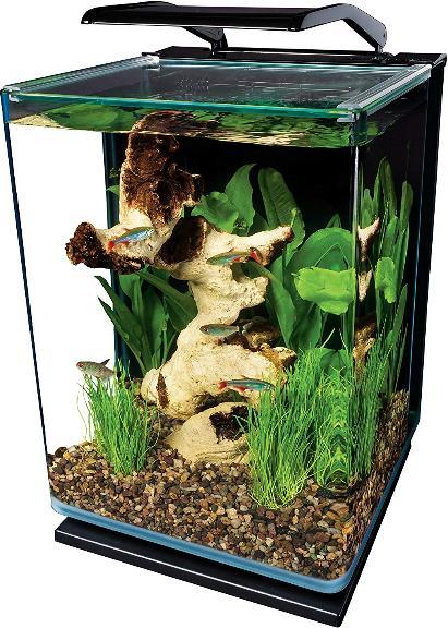 modern 5 gallon portrait fish tank aquarium