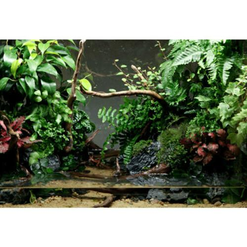 Natural Tree Aquarium Fish Reptile Plant Wood Decor US