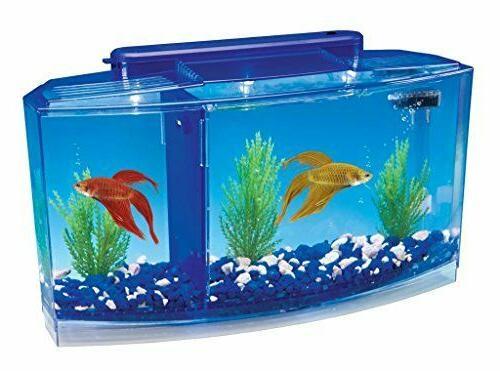 new betta fish tank with divider triple