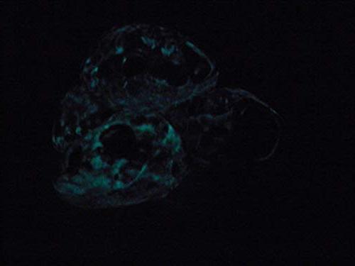 Blue Ornament Ceramic Aquarium Moon Stone Hide Tank Hideout Fish Rest