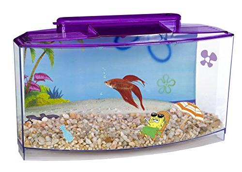 penn plax spongebob betta aquarium