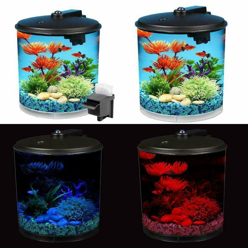 small fish tank beta fish aquarium 2