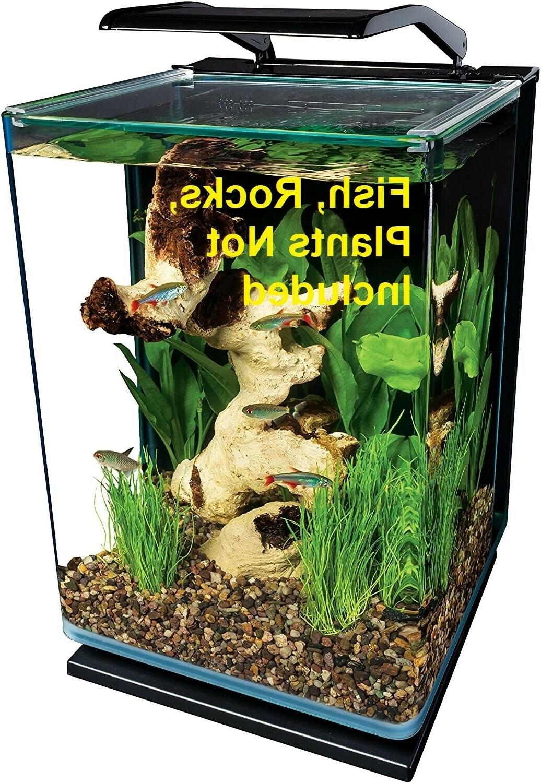 Contoured 5 Gallon Aquarium Fish Tank Starter Kit W/LED Rail