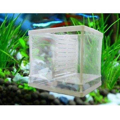 us aquarium fish tank guppy breeding breeder