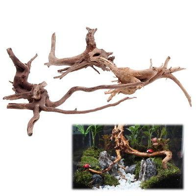 US HOT Fish Driftwood Natural Wood Trunk Ornament