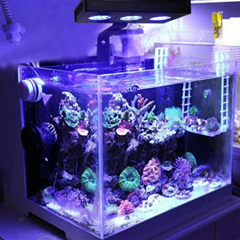 US Led Saltwater Lighting Coral