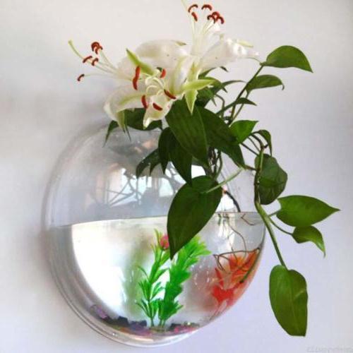 Fish Bowl Wall Tank Goldfish Hanger Home Decor