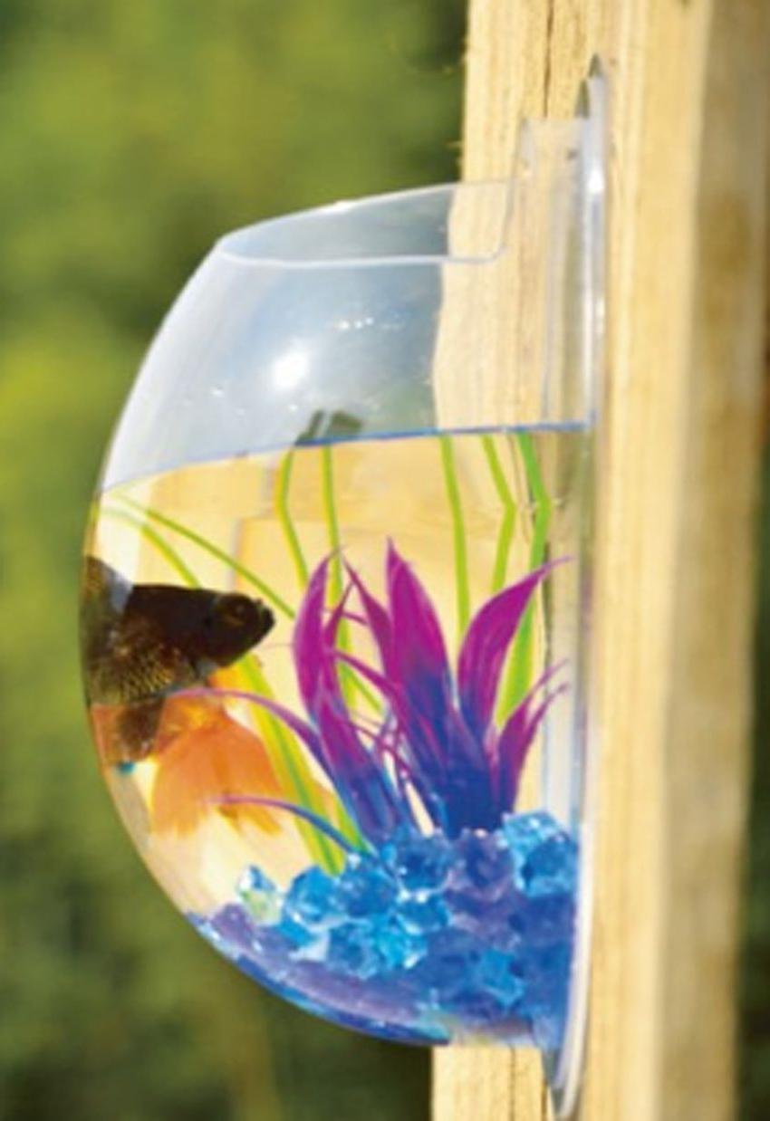 Hanging Mounted Clear Bubble Aquarium Goldfish Box