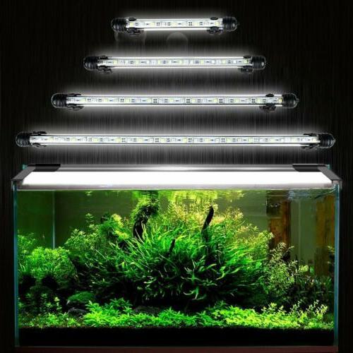 Waterproof Fish Lighting