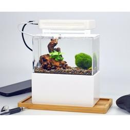 mini desktop aquarium fish and shrimp tank