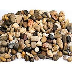 """Natural Pea Gravel WASHED 3/8""""-1/2"""" Pebble stones for Plants"""