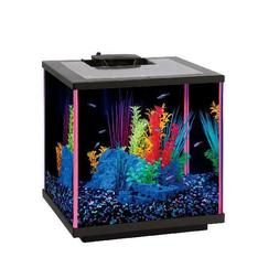 neoglow led 7 5 gallon aquarium starter