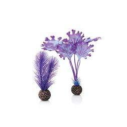 biOrb 46079.0 Kelp Set Small Purple Aquariums