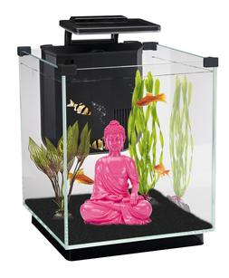 Penn Plax Simplicity Aquarium Kit Glass Cube, Filter, 3 Colo