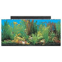 """SeaClear 30 gal System II Acrylic Aquarium, 36 by 12 by 16"""","""