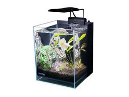 Ultra Low Iron 2.65 Gallon Betta Aquarium Tank All in One 92