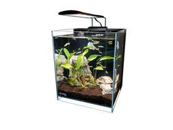 5 Gallon Ultra Low Iron Clear Glass Betta Aquarium with Full