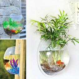 Wall Mounted Glass Bubble Terrarium Air Plant Hanger Planter